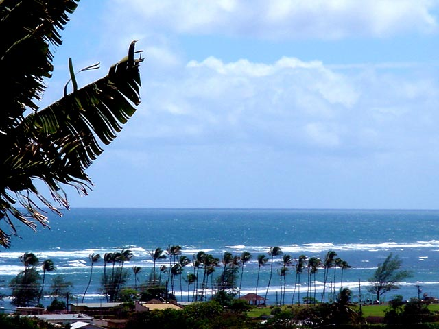 Ocean view from Green Coconut Studio in Kapaa, Kauai, Hawaii