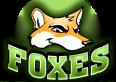 Foxes Fans
