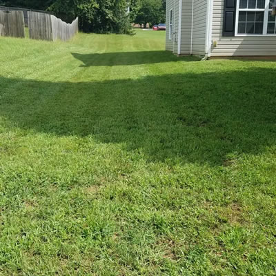 Satisfaction Guaranteed Lawn Care