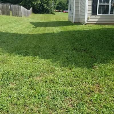 Satisfaction Guaranteed On Time Lawn Care