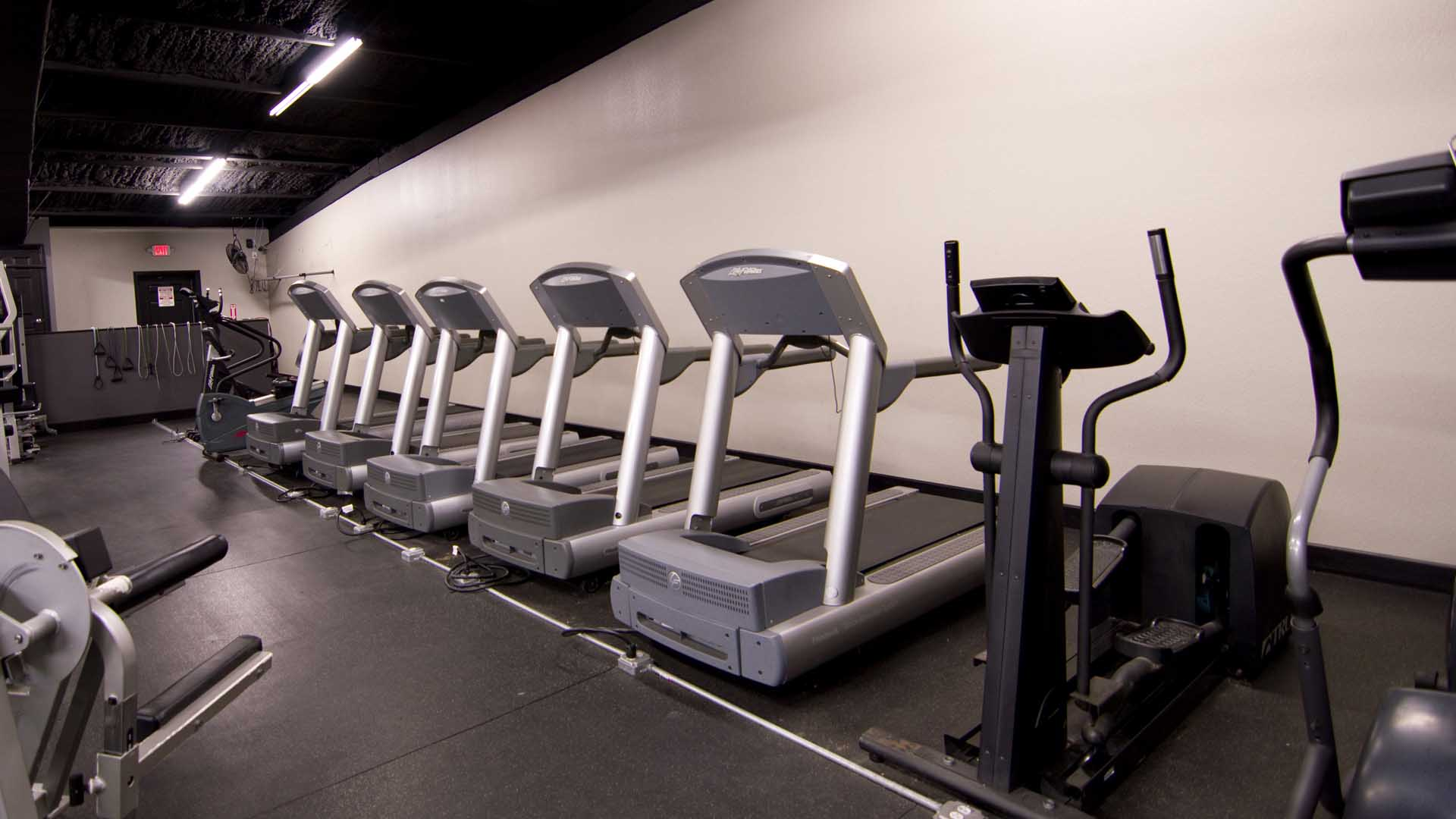 Looking down a line of Life Fitness treadmills and Precor ellipticals in the cardio area of the gym.