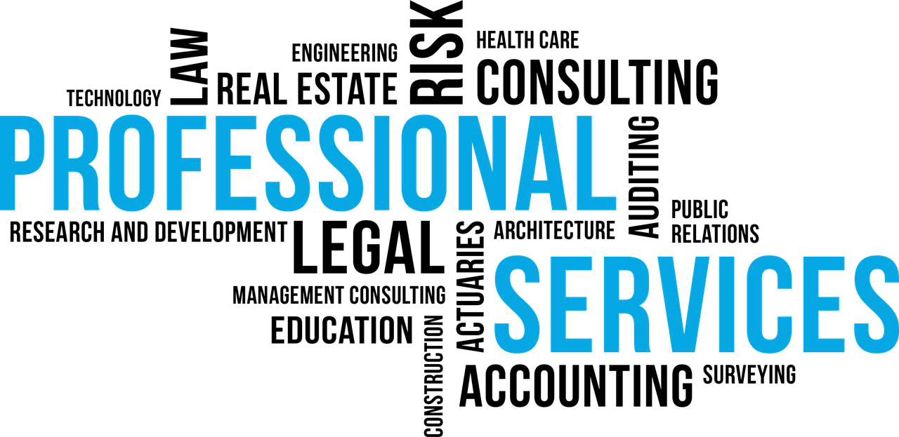 PROFESSIONAL SERVICE