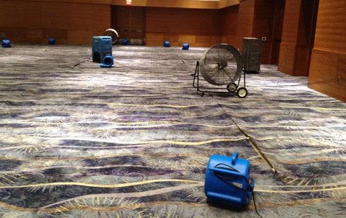 Soft Surfaces Water Damage Commercial