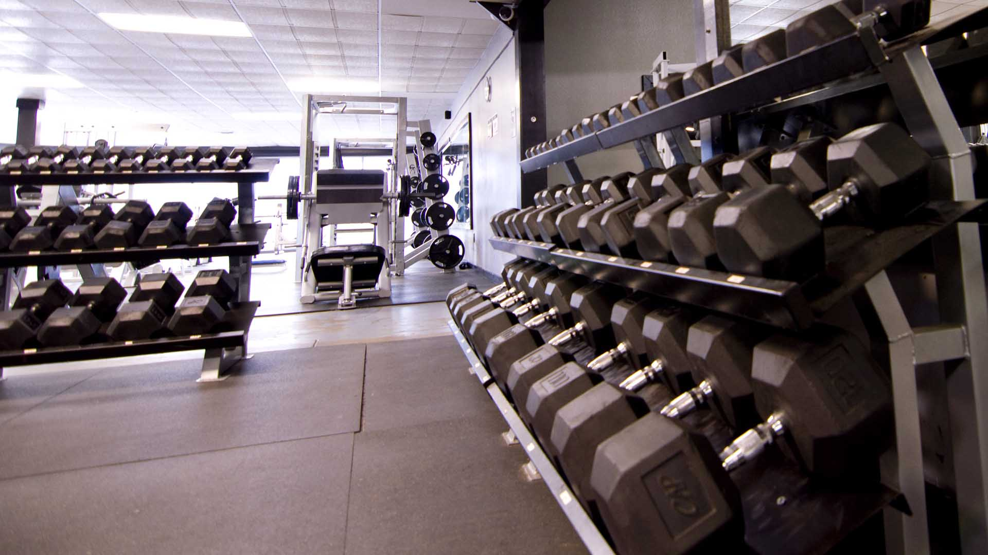 Looking down a line of heavy dumbbells towards the front windows of the gym.