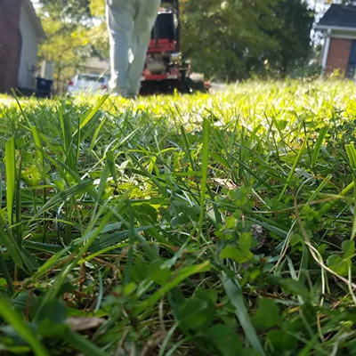 Reliable and On Time Lawn Care