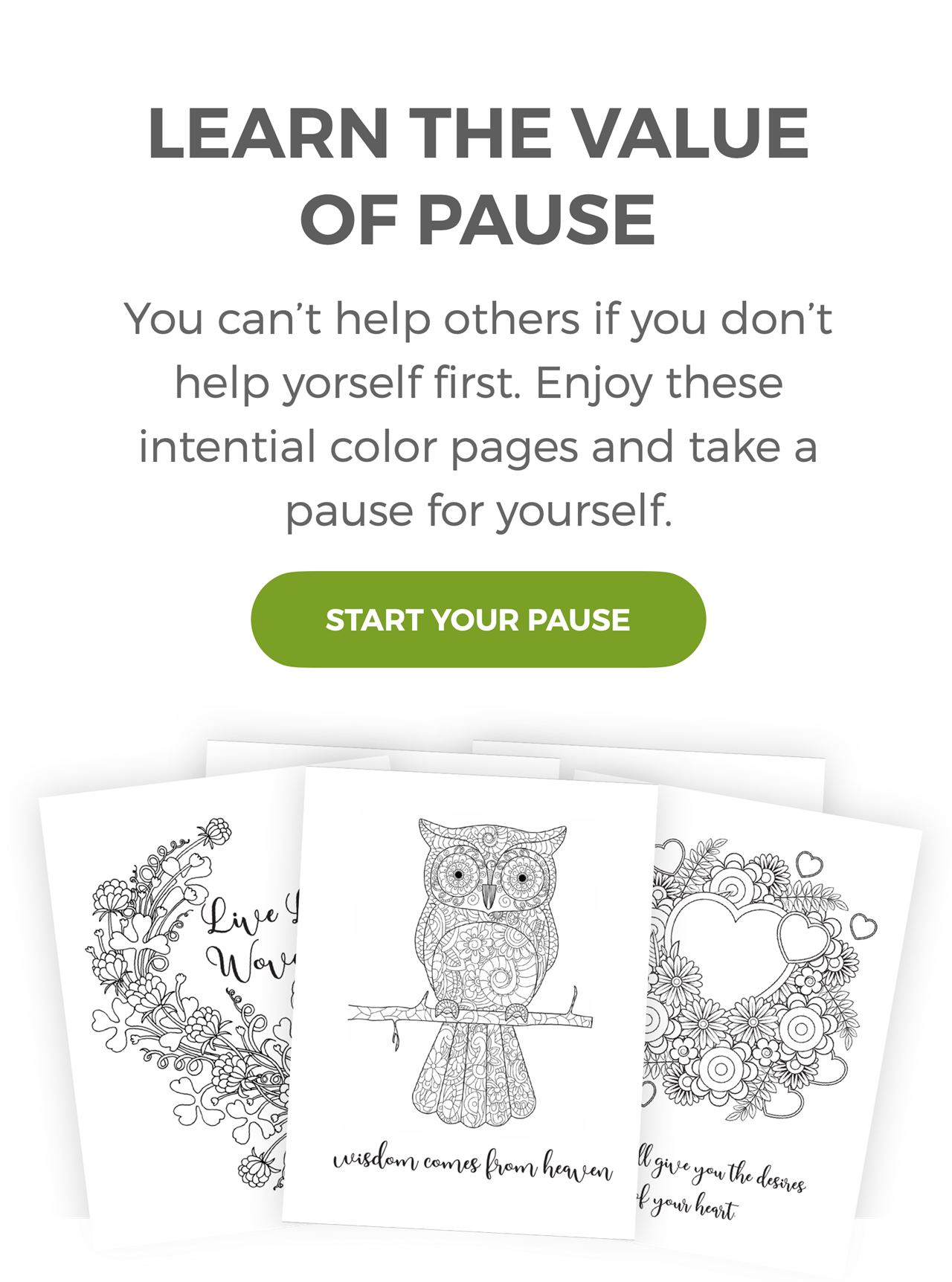 Start Your Pause - Lear the Value of Pause